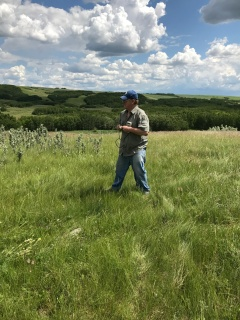 research science soil moisture pasture ranching agriculture grass prairie plains Wainwright Alberta