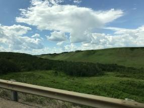 landscape green grass prairie Alberta Wainwright Edgerton